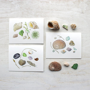 A set of three lovely watercolor note cards featuring nature collections from the beach. Painted by Kathleen Maunder.