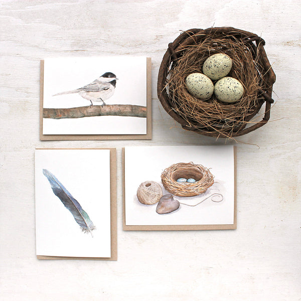 Set of three bird note cards featuring watercolors by Kathleen Maunder