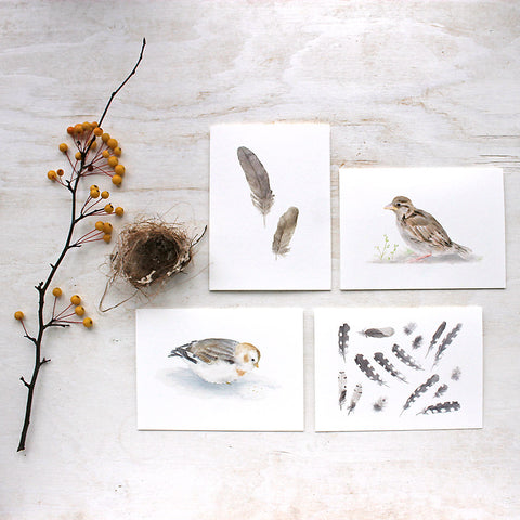Four watercolor note cards featuring bird and feather paintings by Kathleen Maunder