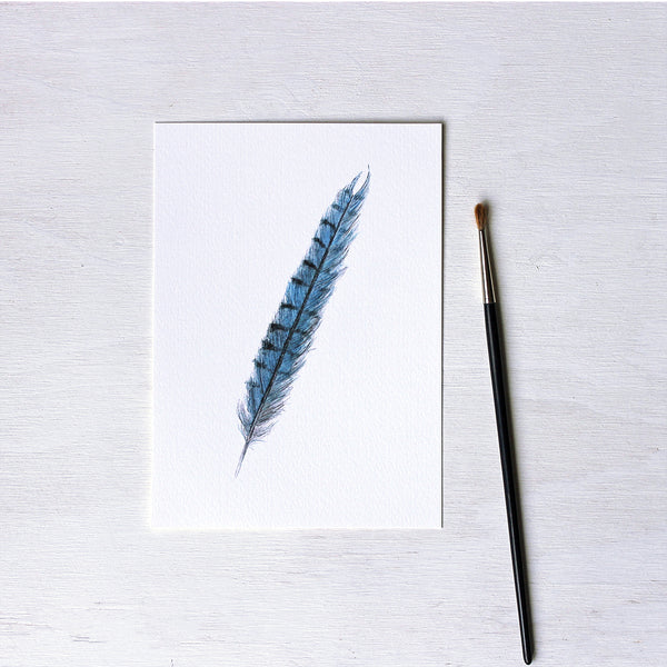 A blue jay feather art print based on an original watercolour painting by Canadian artist Kathleen Maunder.