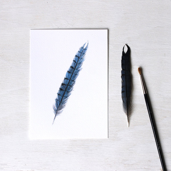 A blue jay feather art print based on an original watercolor painting by Kathleen Maunder.