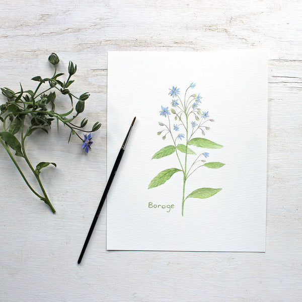 Borage watercolor print by Kathleen Maunder of Trowel and Paintbrush