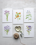 Set of five cards featuring botanical watercolor paintings by Kathleen Maunder