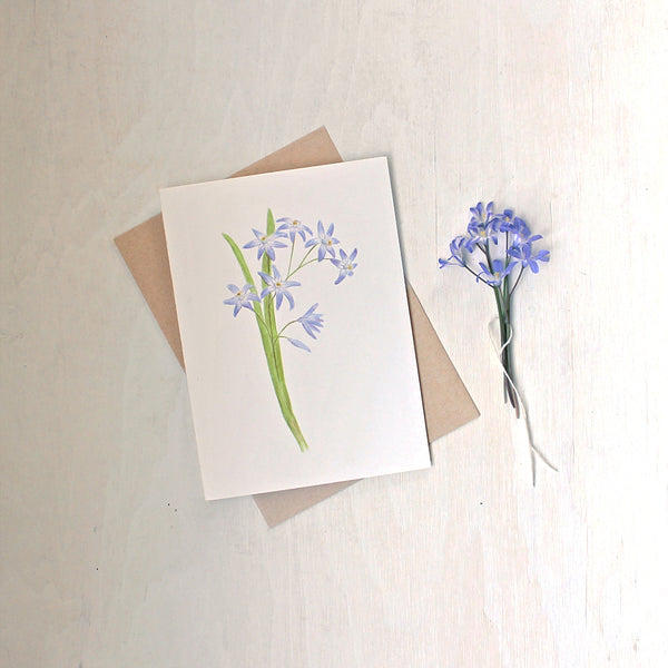 A note card featuring a watercolour painting of blue chionodoxa (glory of the snow) by artist Kathleen Maunder.