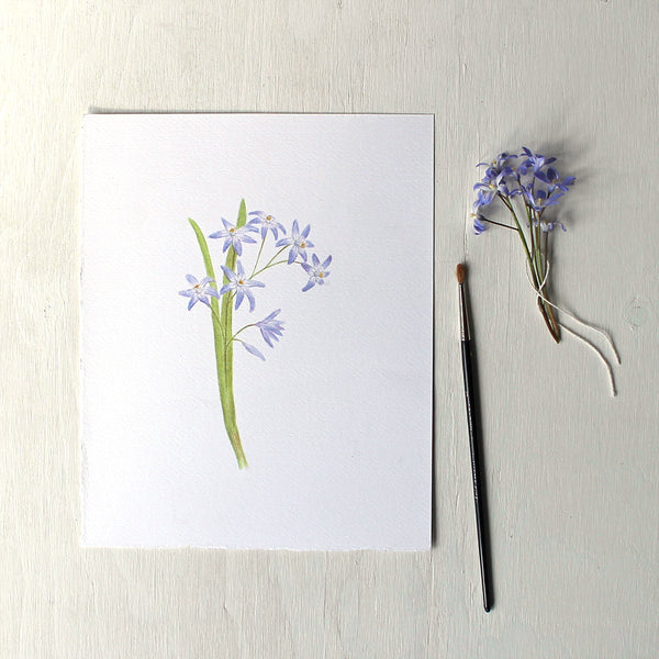 An art print featuring a watercolor painting of blue chionodoxa or glory-of-the-snow. Artist Kathleen Maunder.