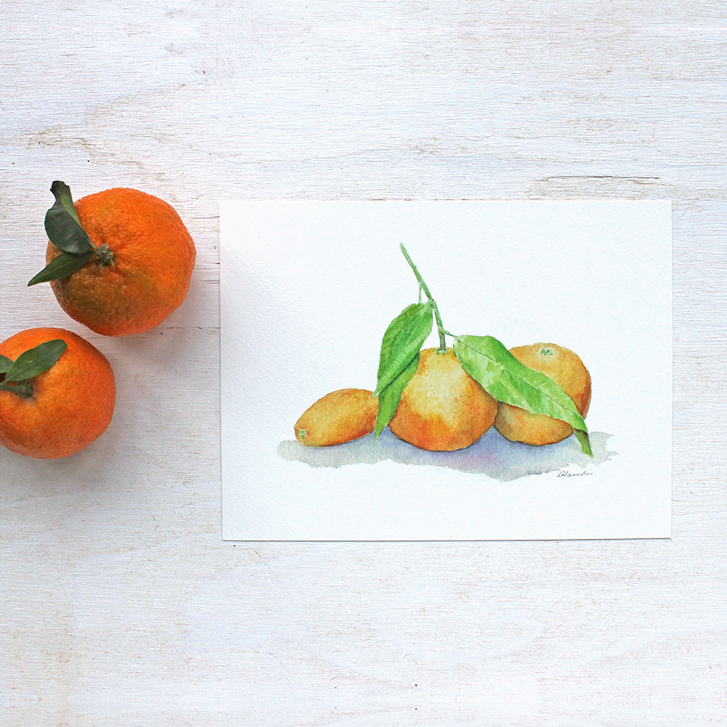 Clementines and kumquat watercolor print by Kathleen Maunder, trowelandpaintbrush.com