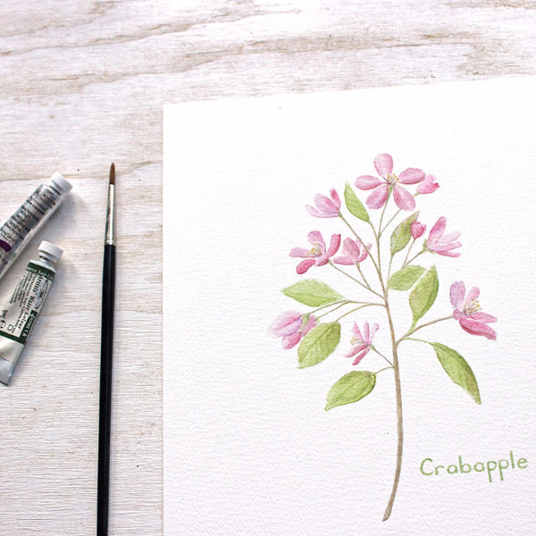 Crabapple print by watercolor artist Kathleen Maunder, Trowel and Paintbrus