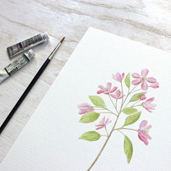 Crabapple watercolor painting by Kathleen Maunder, Trowel and Paintbrush
