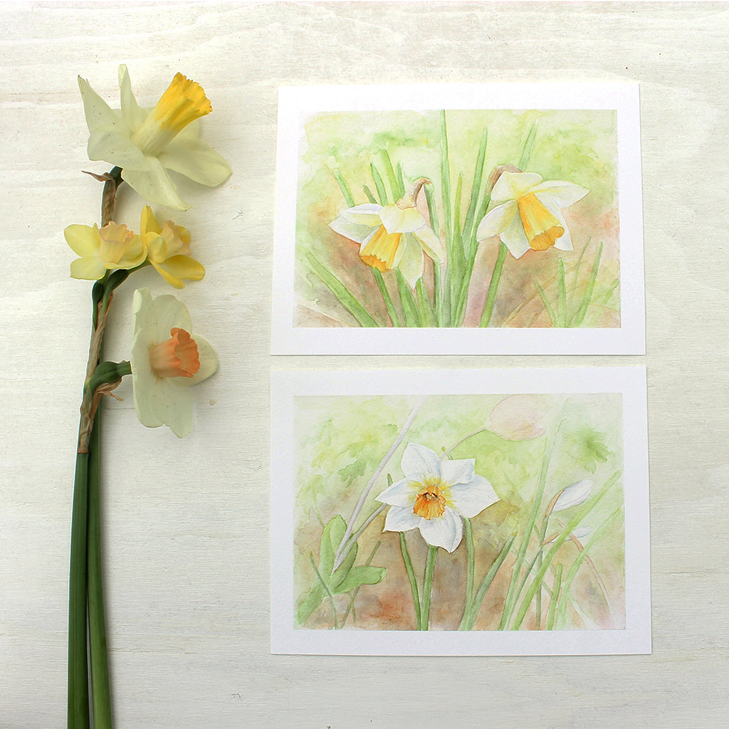 Two prints of daffodil watercolor paintings by Kathleen Maunder