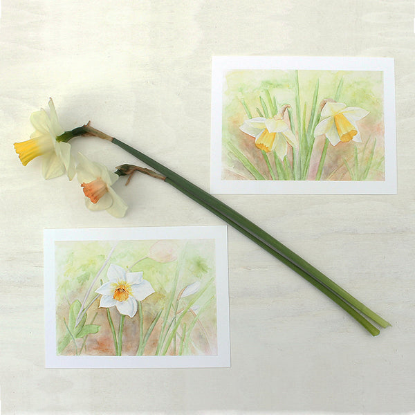 Watercolour paintings of daffodils by artist Kathleen Maunder