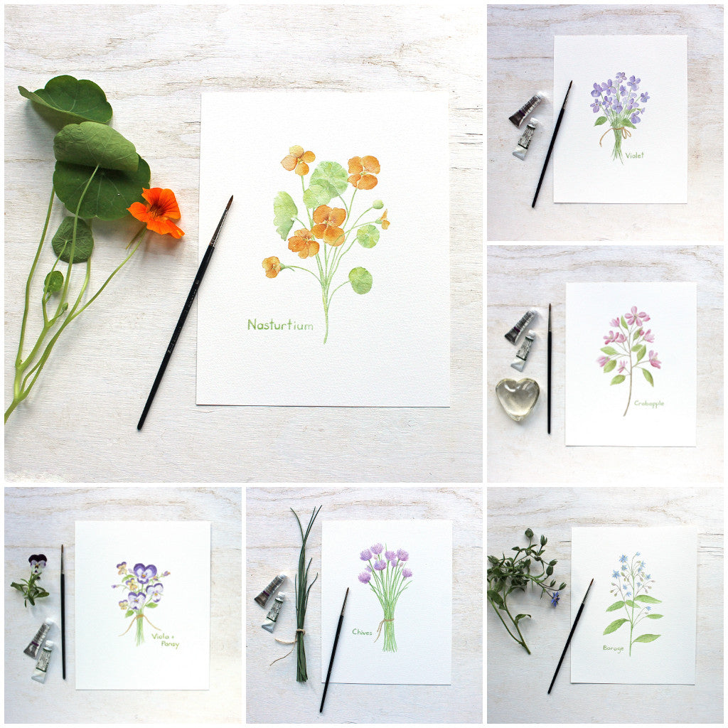 Edible Flower Watercolor Collection - Set of 6 Prints