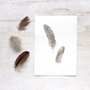 Original watercolor painting of sparrow feathers by Kathleen Maunder