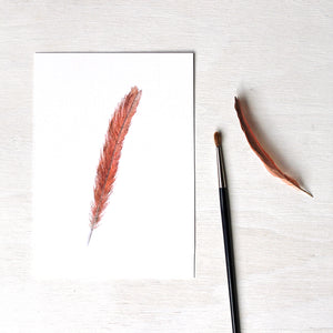 Art print featuring an original watercolor painting of a female cardinal tail feather by Kathleen Maunder.