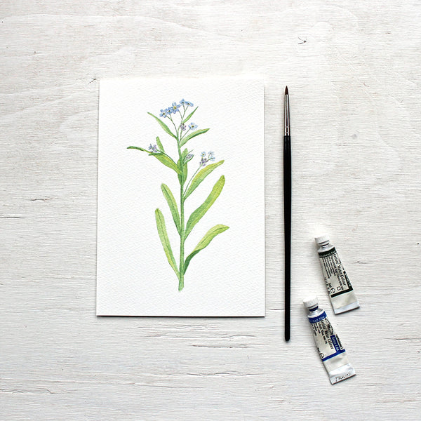 Forgetmenots watercolour print by artist Kathleen Maunder