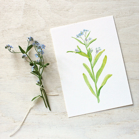 Blue Flowers - Forgetmenots Print