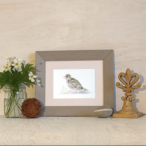 Framed baby sparrow print by Kathleen Maunder of Trowel and Paintbrush