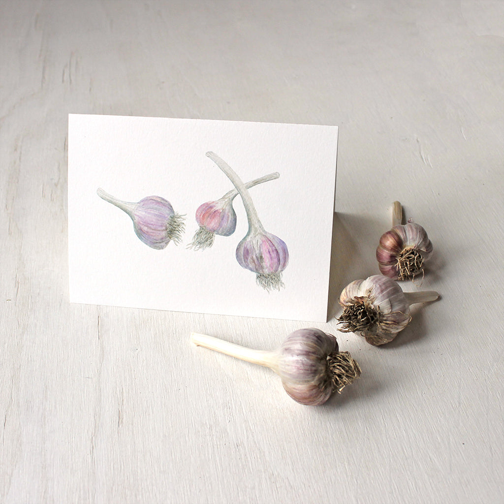 Note cards based on garlic watercolor painting by Kathleen Maunder - Trowel and Paintbrush.