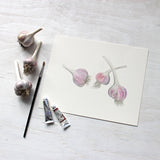 Three bulbs of purple stripe garlic - Watercolor by Kathleen Maunder of Trowel and Paintbrush