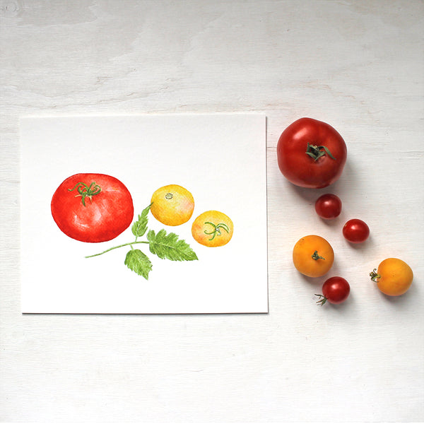 A watercolor art print depicting three heirloom tomatoes: a red Beefsteak tomato and two Garden Peach tomatoes. Artist Kathleen Maunder.
