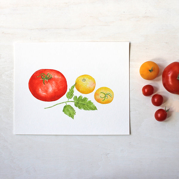 An art print of three heirloom tomatoes (one red Beefsteak and two yellow Garden Peach tomatoes) by watercolor artist Kathleen Maunder.