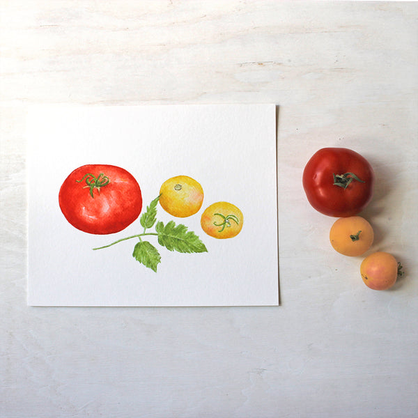 An art print with a red Beefsteak tomato and two yellow Garden Peach tomatoes. Painted in watercolour by Kathleen Maunder.