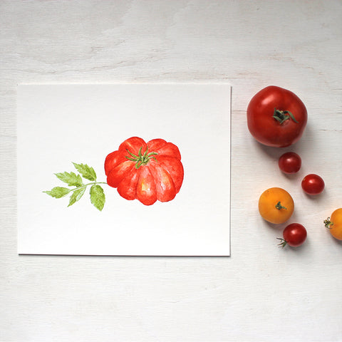 A beautiful red heirloom tomato (Costoluto Fiorentino) and leaf painted by watercolour artist Kathleen Maunder.