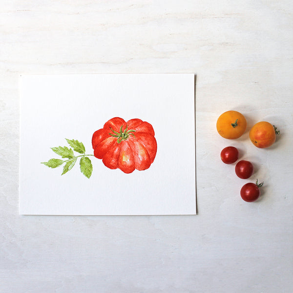 A print depicting a beautiful red heirloom tomato, Costoluto Fiorentino. Painted by watercolor artist Kathleen Maunder.