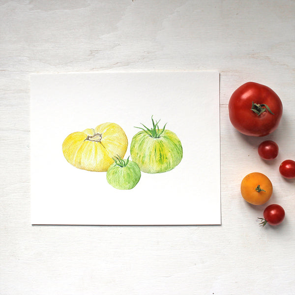 A watercolor art print depicting a grouping of one pale yellow (Beauté blanche) tomato and and two green-striped Zebra tomatoes. Artist Kathleen Maunder.