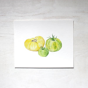 A print depicting three heirloom tomatoes, one pale yellow and two green striped ones. Painted by watercolor artist Kathleen Maunder.