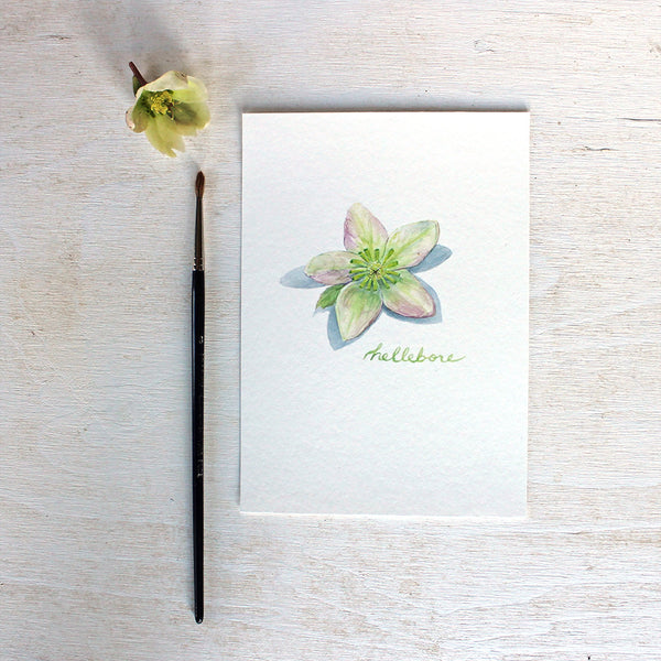 Lovely art print of a hellebore watercolor painting by Kathleen Maunder