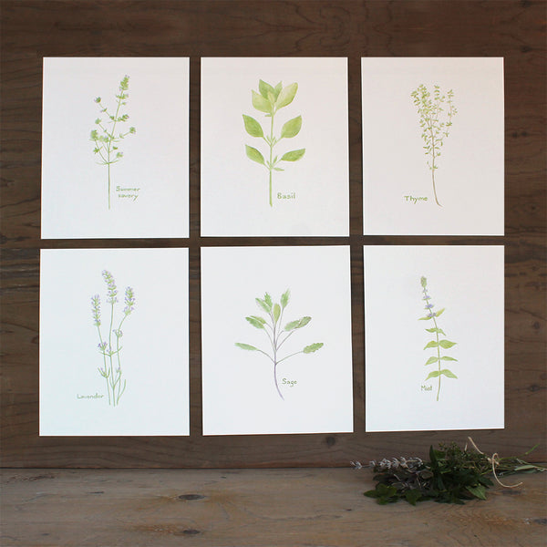 Herb Watercolor Collection - Set of 6 Prints