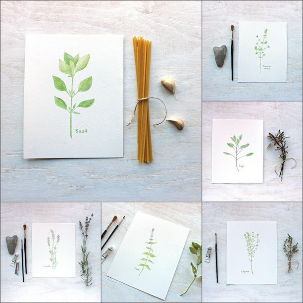Herb Watercolor Collection by Kathleen Maunder, trowelandpaintbrush.com
