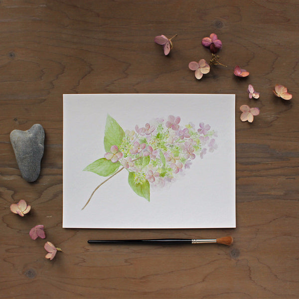 Hydrangea watercolor print by Kathleen Maunder of Trowel and Paintbrush