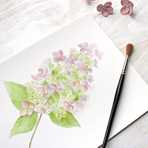 Closeup of hydrangea print by watercolor artist Kathleen Maunder of Trowel and Paintbrush