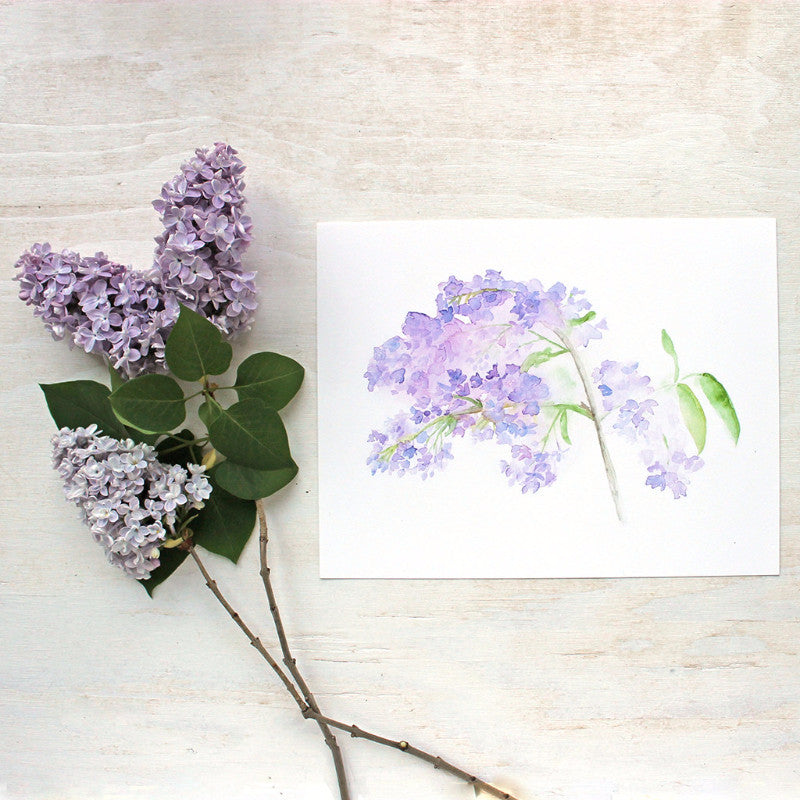 Lilacs Watercolor Print by artist Kathleen Maunder (trowelandpaintbrush)