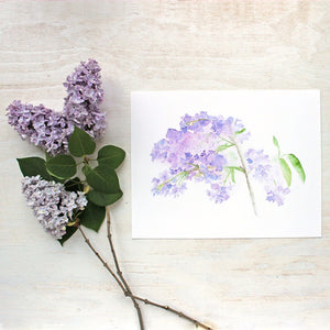Lilacs Watercolor Print by artist Kathleen Maunder of Trowel and Paintbrush