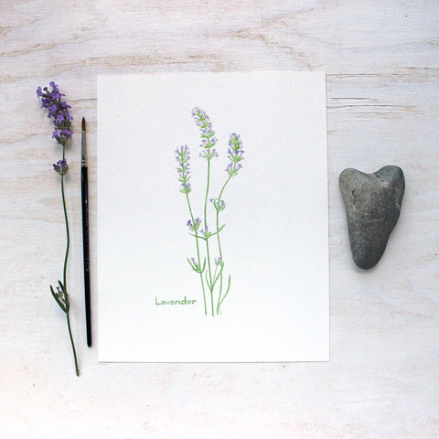 Lavender print by watercolor artist Kathleen Maunder, trowelandpaintbrush