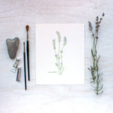 Print of lavender watercolor painting by Kathleen Maunder, trowelandpaintbrush