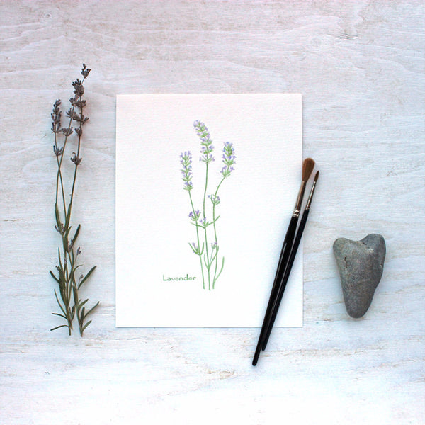 Lavender print from botanical herb watercolor series by Kathleen Maunder