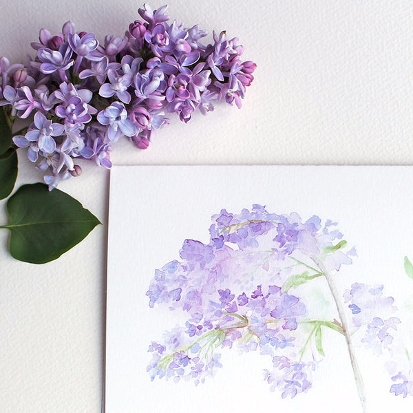 Note card featuring lilacs by watercolour artist Kathleen Maunder