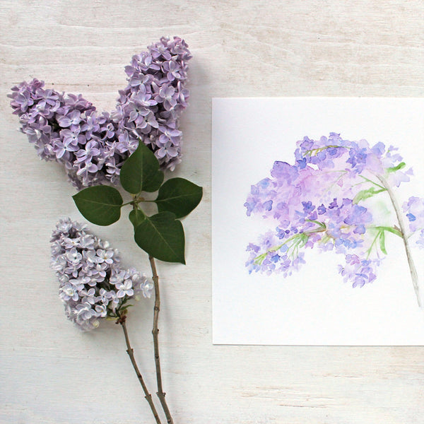 Lilac watercolor print by artist Kathleen Maunder of Trowel and Paintbrush