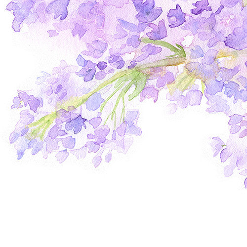 Detail of lilacs print by artist Kathleen Maunder