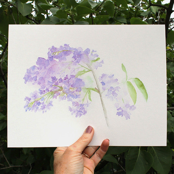 Lilac watercolor art print by Kathleen Maunder of Trowel and Paintbrush