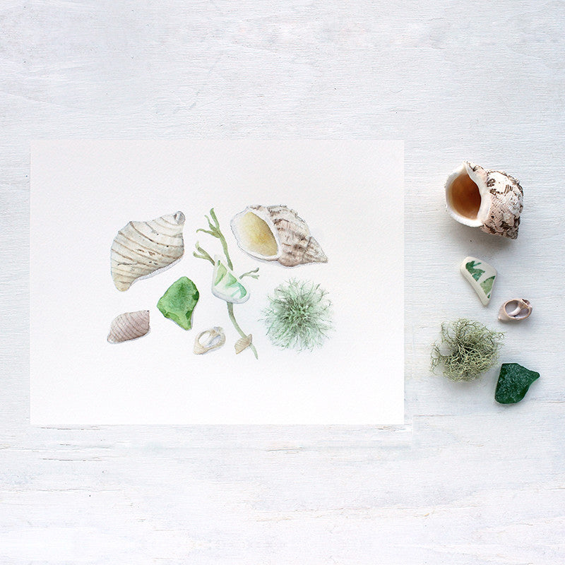Watercolor print of sea shells and beach glass by Kathleen Maunder of Trowel and Paintbrush