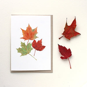 Maple Leaves Note Cards