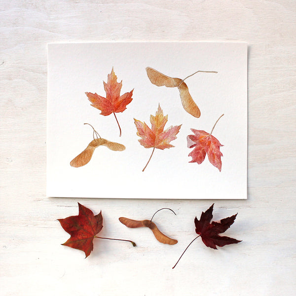 Autumn print featuring a watercolor of maples leaves and keys by Kathleen Maunder