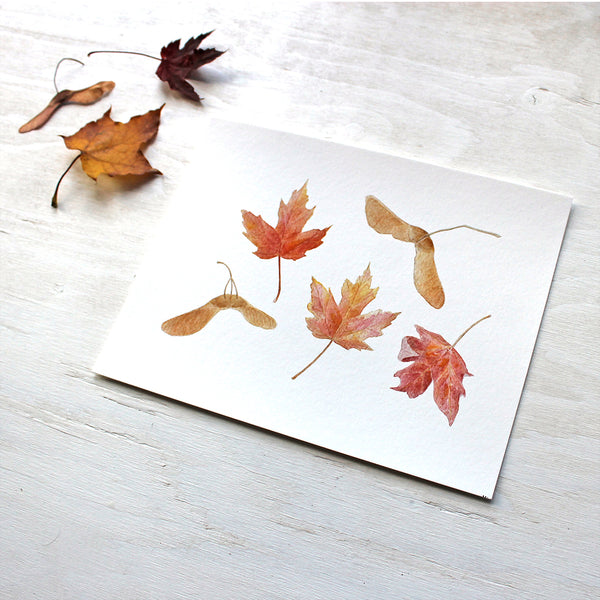 Autumn print featuring a watercolor of maples leaves and keys by Kathleen Maunder of Trowel and Paintbrush
