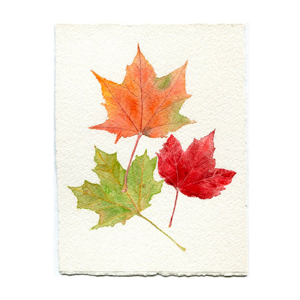 Maple Leaves Original Watercolor Painting