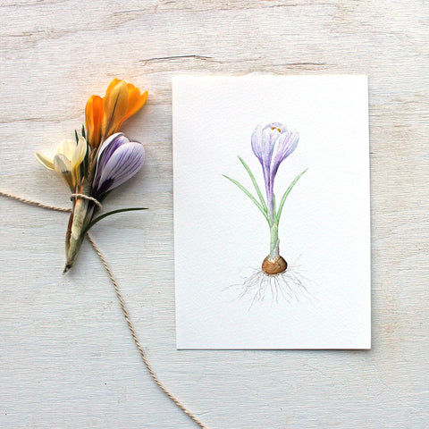 Crocus Watercolor Print - Purple