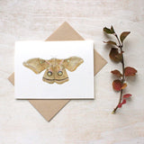Moth watercolour painting on note cards by artist Kathleen Maunder of Trowel and Paintbrush